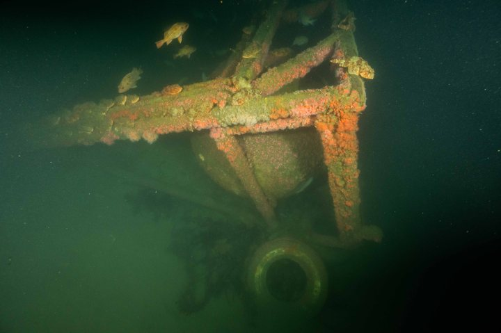 Diving Unknown Sites