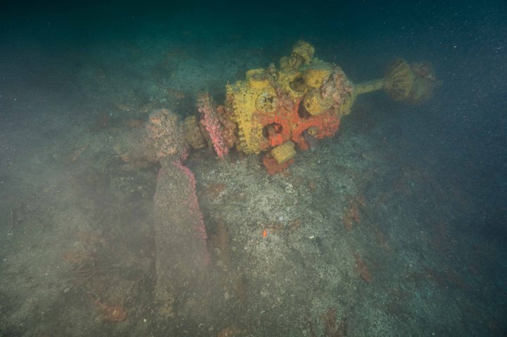 An epic 3 days of diving new wreck sites in DanaPoint